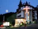 Алпин,Хотели в Боровец